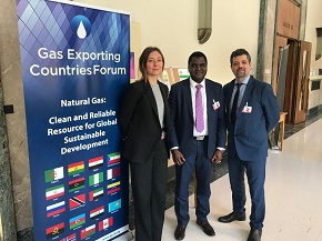 6th Session UNECE Group of Experts on Gas_HP2